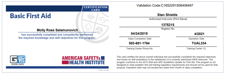 American Safety And Health Insute Basic First Aid Certification